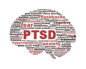 PTSD Brain Chart